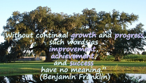 """Without continual growth and progress, such words as improvement, achievement, and success have no meaning."" Benjamin Franklin"