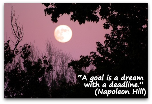 """A goal is a dream with a deadline."" (Napoleon Hill)"