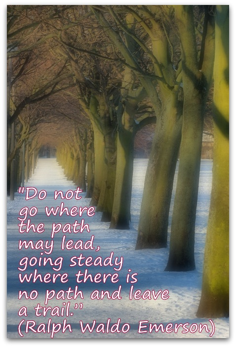 """Do not go where the path may lead, going steady where there is no path and leave a trail."" (Ralph Waldo Emerson)"
