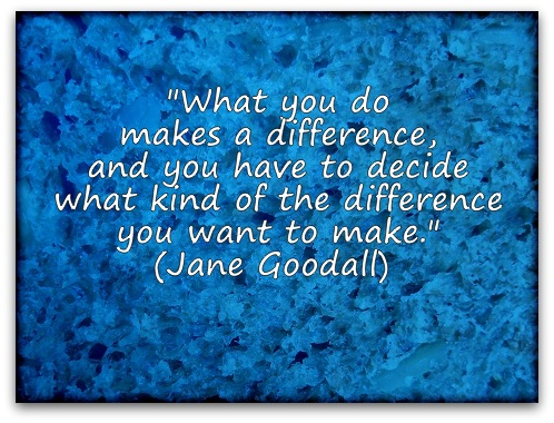 What to do to make a difference essay
