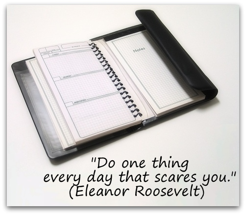 """Do one thing every day that scares you."" (Eleanor Roosevelt)"