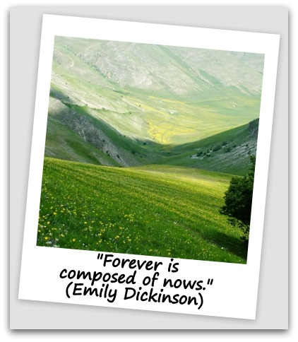 """Forever is composed of nows."" (Emily Dickinson)"