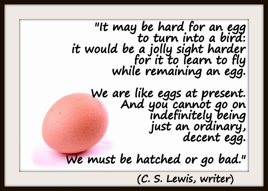 """It may be hard for an egg to turn into a bird: it would be a jolly sight harder for it to learn to fly while remaining an egg. We are like eggs at present. And you cannot go on indefinitely being just an ordinary, decent egg. We must be hatched or go bad."" (C. S. Lewis, writer)"