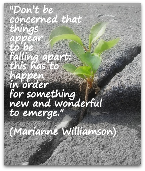 """Don't be concerned that things appear to be falling apart: this has to happen in order for something new and wonderful to emerge."" (Marianne Williamson)"