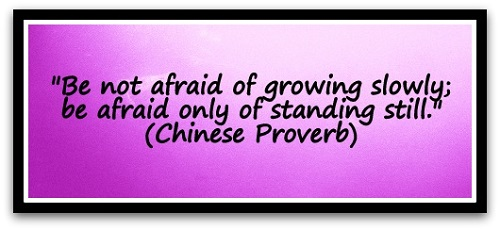 """Be not afraid of growing slowly; be afraid only of standing still."" (Chinese proverb)"
