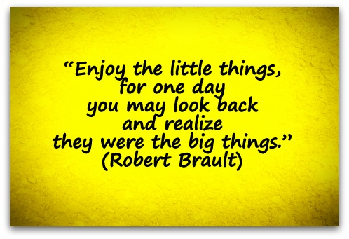 """Enjoy the little things, for one day you may look back and realize they were the big things."" (Robert Brault)"