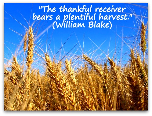"""The thankful receiver bears a plentiful harvest."" (William Blake)"