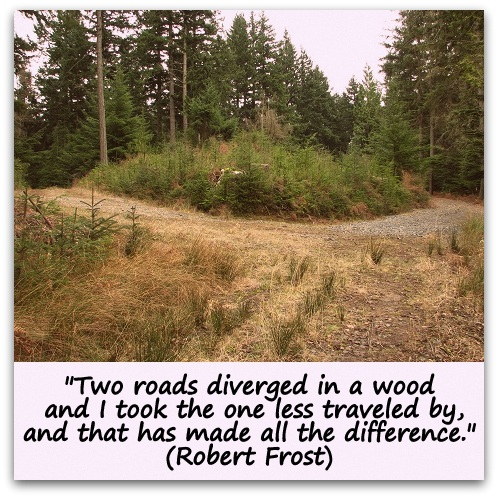 robert frost 2 flashcard This lesson features an analysis of robert frost's poem 'nothing gold can stay' it will look at how it connects with and helps us better understand the characters and plot of se hinton's novel.