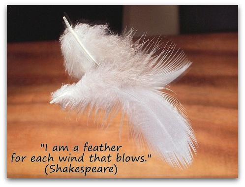 """I am a feather for each wind that blows."" (Shakespeare)"