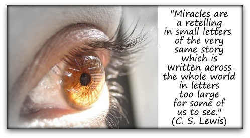 """""""Miracles are a retelling in small letters of the very same story which is written across the whole world in letters too large for some of us to see."""" (C. S. Lewis)"""